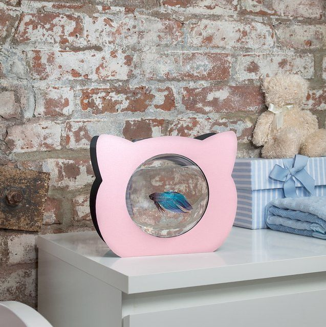 1000 ideas about fish bowl decorations on pinterest for Fancy fish tanks