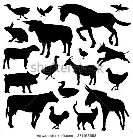 Set of black silhouette of farm animals isolated in white background