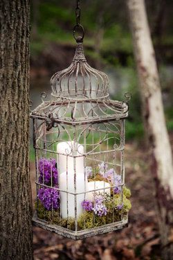 Birdcage with flowers and candle ( a romantic piece for any spot in or around the home)!