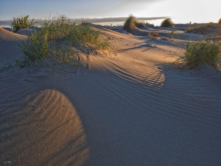 Dünen der Camargue (Foto von JOKIST)