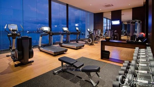 1000 images about luxury home gyms on pinterest for Luxury home gym