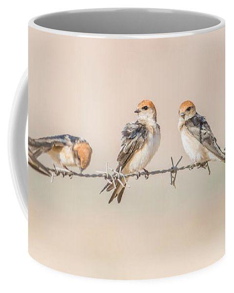 Fairy Martin Coffee Mug featuring the photograph Fairy Martins by Racheal Christian