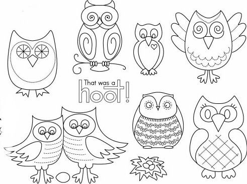 Cropped owls 2 for letter size printing