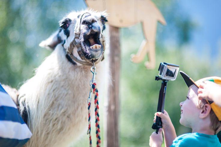 Zeit für Cool Kids Fun. Beim Kinderprogramm in der Region Zell am See-Kaprun wird es niemals langweilig. Gletscher, See, Berge - das volle Programm für