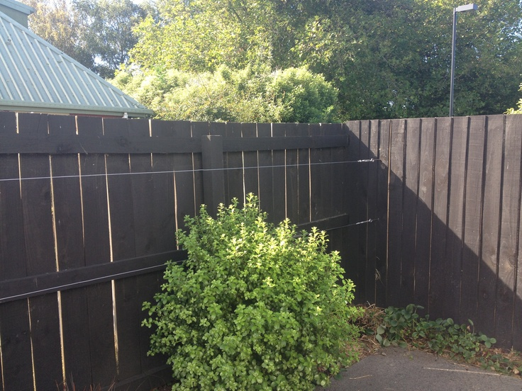 Stage one - espalier fruit tree wire on the north fence of the courtyard. BSB Christchurch New Zealand autumn 2013