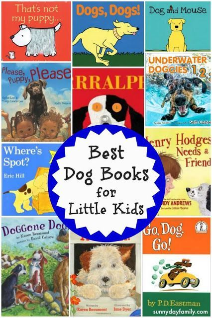 dog stories for preschoolers 1000 images about pet theme for preschool on 717