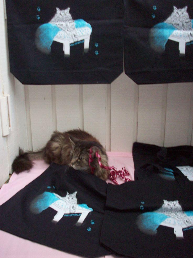Rosa bandet kampanjen går vidare. Simba bland en massa rejäla och praktiska tygväskor med han själv som motiv. www.Katt4you.se