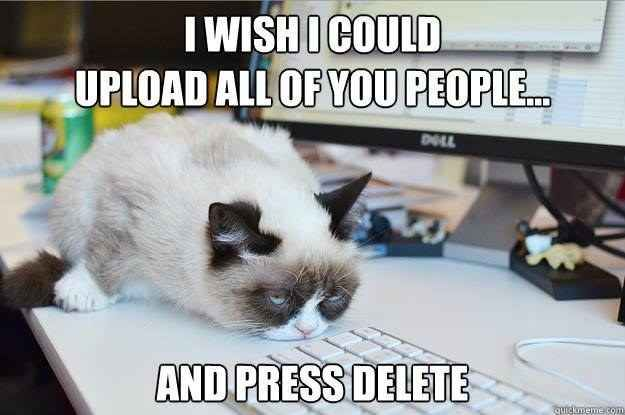 Yes, she hates people | 14 Hilarious Grumpy Cat Memes That Will Make You Smile