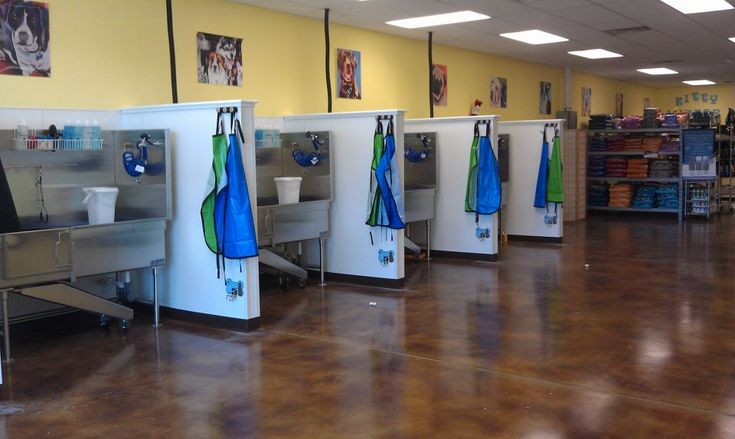 12 best dog wash images on pinterest dog daycare dog grooming grooming tubs solutioingenieria Gallery