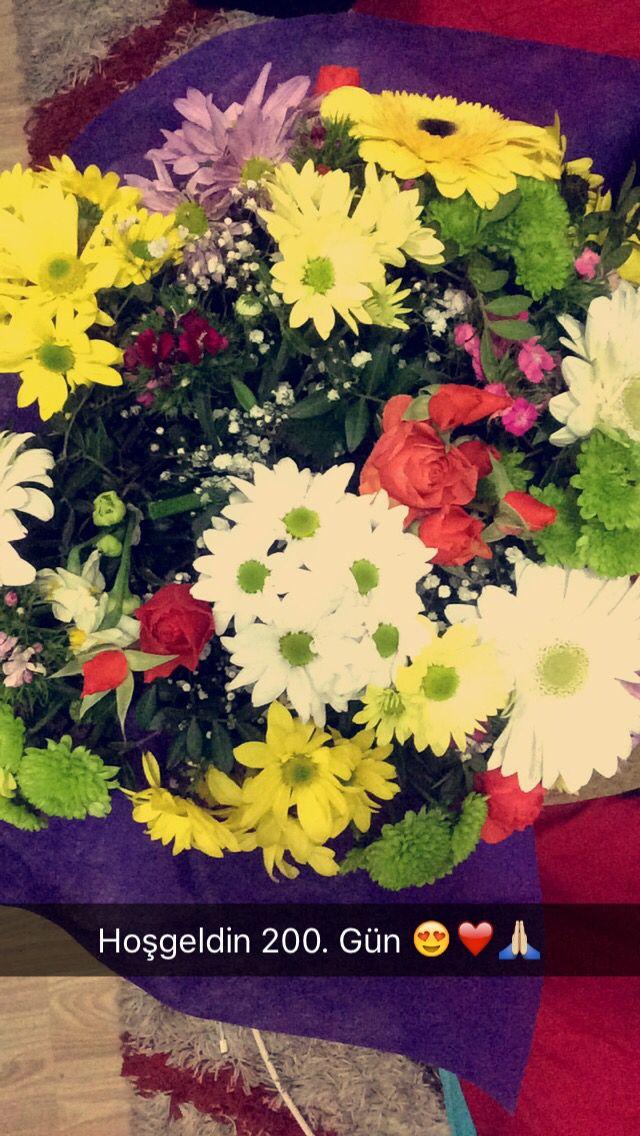 Bahar da açan Kırçiçekleri