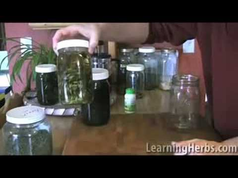 Nettle Infusion: herbal nutrition with herbal infusions