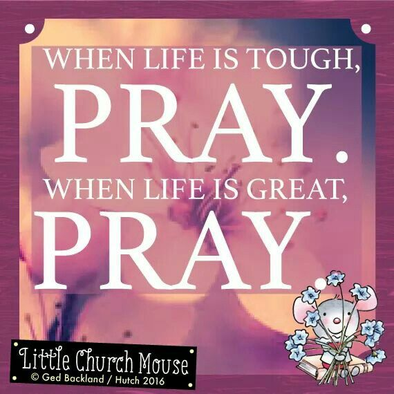 ♡♡♡ When life is tough, Pray. When life is great Pray. Amen...Little Church Mouse 11 July 2016 ♡♡♡