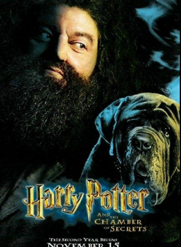 Harry Potter Harry Potter Dog Harry Potter Films Harry Potter 2
