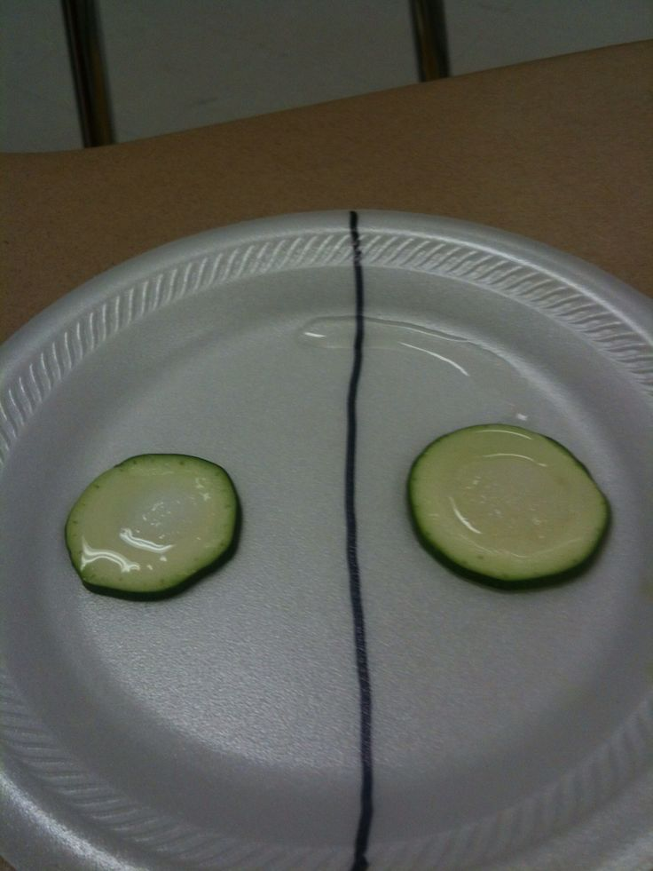 Showing osmosis with cucumber slices, salt and sugar