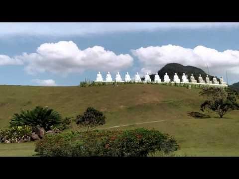 O Encontro da Paz com a Natureza no Mosteiro Zen Budista - Vivendo a Vida bem Feliz
