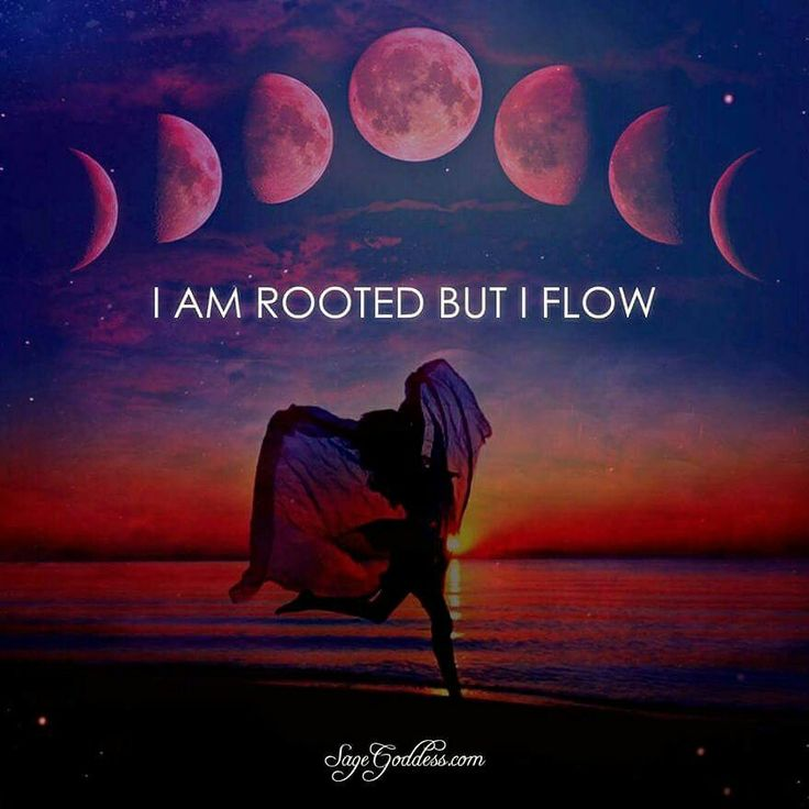 Being ~ rooted ~ grounded ~ is but half of the connection, when you ground through meditation you connect to ~ earth ~ but also to divine wisdom ~ this creates the flow!  Lightbeingmessages.com