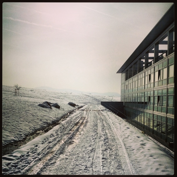 Immer noch Schnee... by Thomas Lottermoser: http://pinterest.com/manganite/