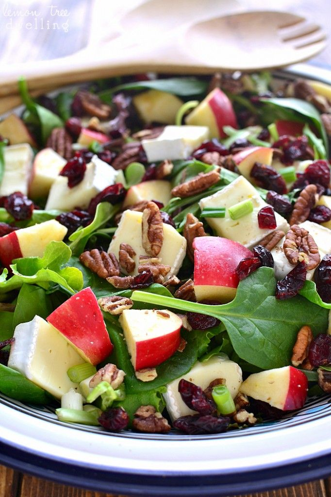 Apple Brie Salad | Lemon Tree Dwelling