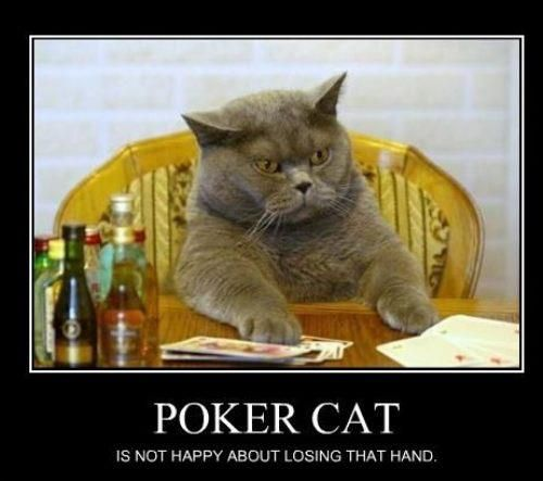 Even if you are having a bad hand and losing your game, Don't be rude to any player. If you are losing than it doesn't means that you have right to blame and curse other players,it happens just because of you bad luck and little knowledge about the game. So try to control you anger and emotions.