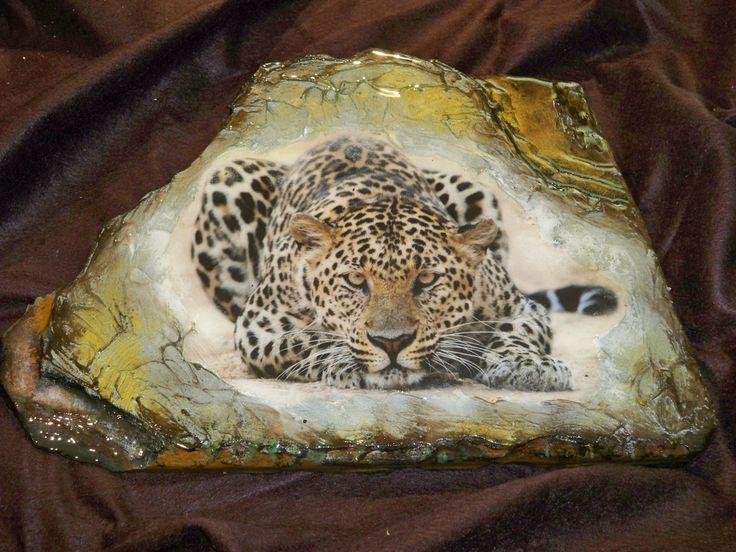 Leopard LP0002