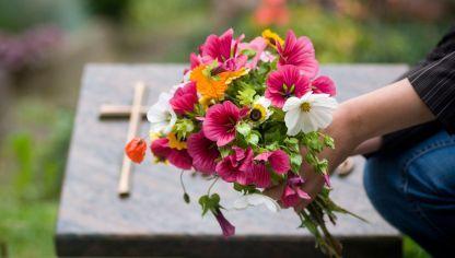 5 flores para el día de Todos Santos