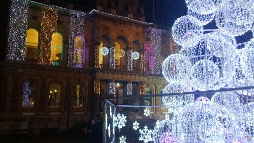 IPSWICH Town hall with christmas lights and modern tree 2015 . By Tracey Souza.