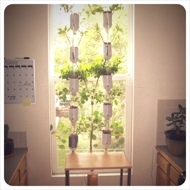 if you're an urban dweller without access to soil, you have a inclination towards DIY projects, AND you've always wanted to be a farmer, you better pay attention to this post. window farming is a growing system that allows for year-round farming in almost any window. basically, the plants capture the natural light and vertically [...]