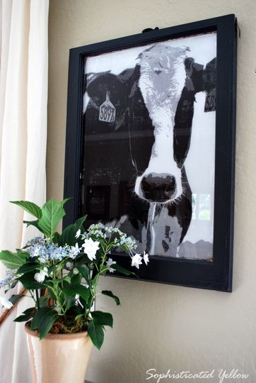 Graphic Cow Art Tutorial. glass window, mod podge and a staples engineering print.  I want to make!