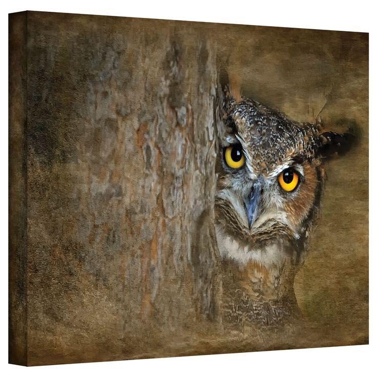 ArtWall Antonio Raggio 'Peeping Owl' Gallery-Wrapped (12x18)