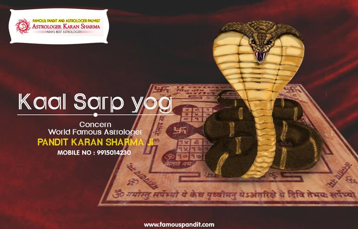 If You are Facing Kaal Sarp Yog Problem Get KaalSarp Yog Solution by Famous Astrologer Pt. Karan Sharma. For More Visit http://www.famouspandit.com/remove-  kaal-sarp.php