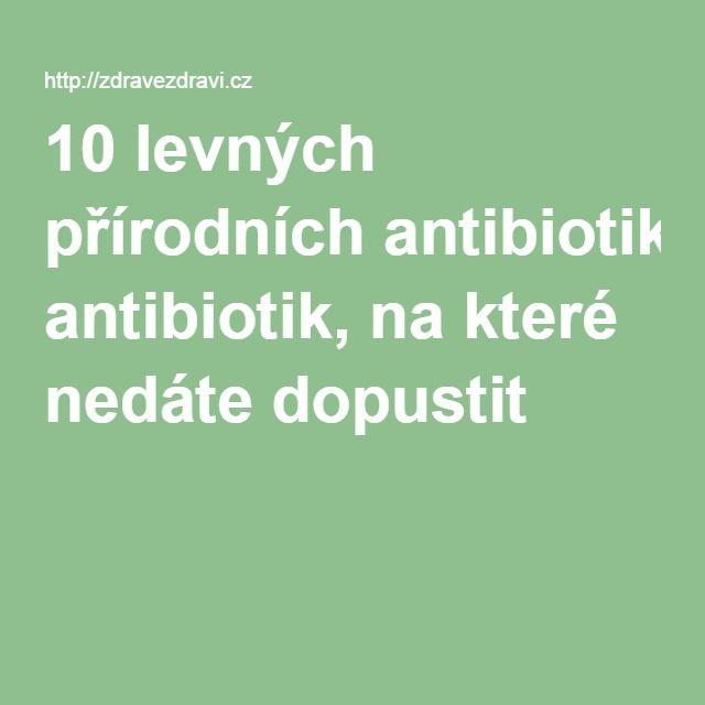10 levných přírodních antibiotik, na které nedáte dopustit