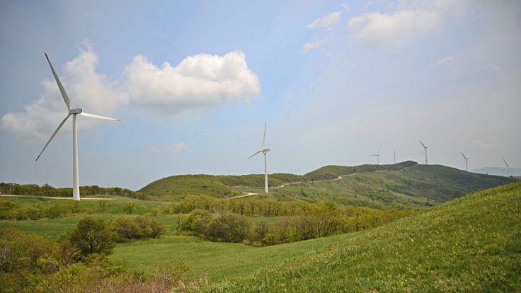 대관령 풍력발전소