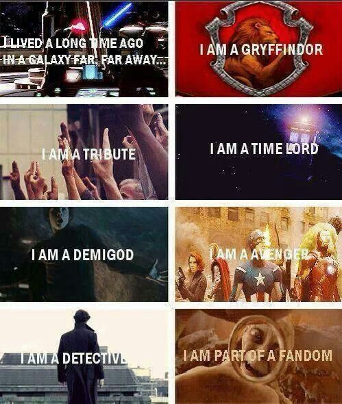 Unite! Although I am NOT a tribute...i do want to eventually become a time lord:)