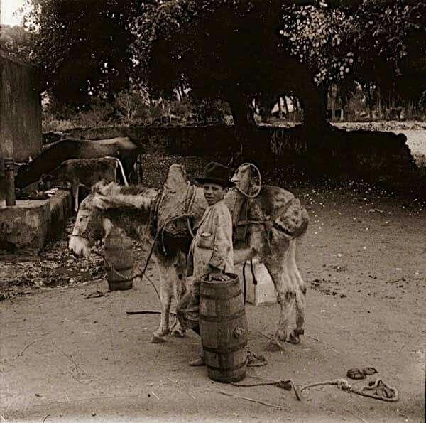 Abrevadero,fuente,camino de Las Mercedes. Autor: Enrique Sanchez González.Año:1920.