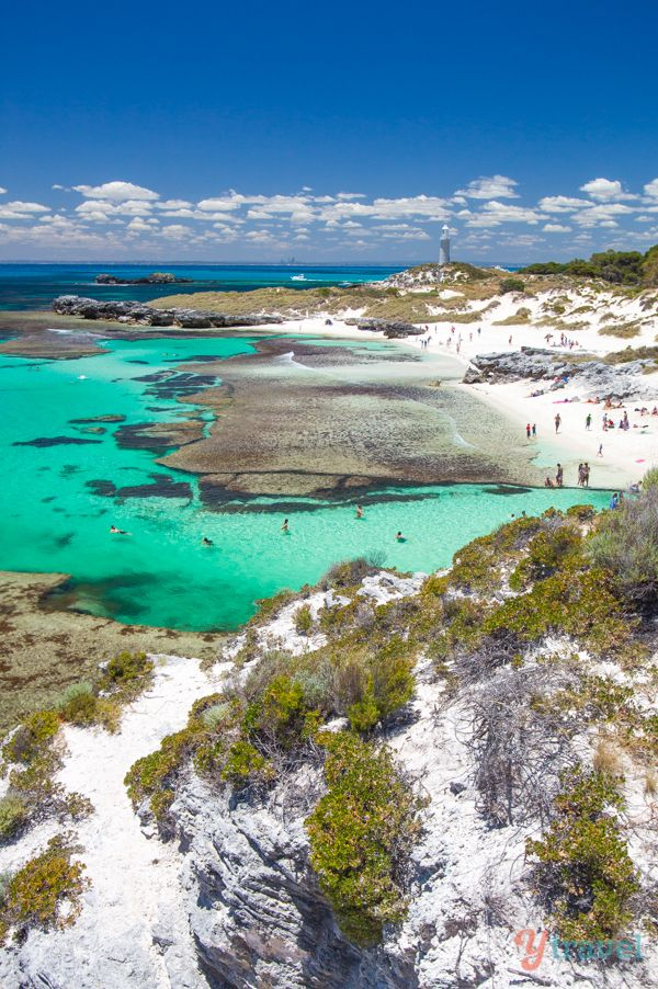 When you visit Perth in Western Australia take a day trip to Rottnest Island to see stunning beaches like this one!