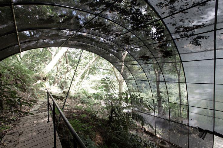 Galería - Siu Siu – Laboratorio de sentidos primitivos / DIVOOE ZEIN Architects - 19