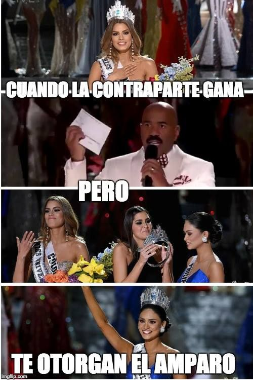 #memes juridicos
