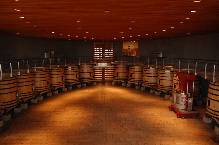 Wineries in Colchagua Valley- Chile  Eureka Travel #SouthAmerica