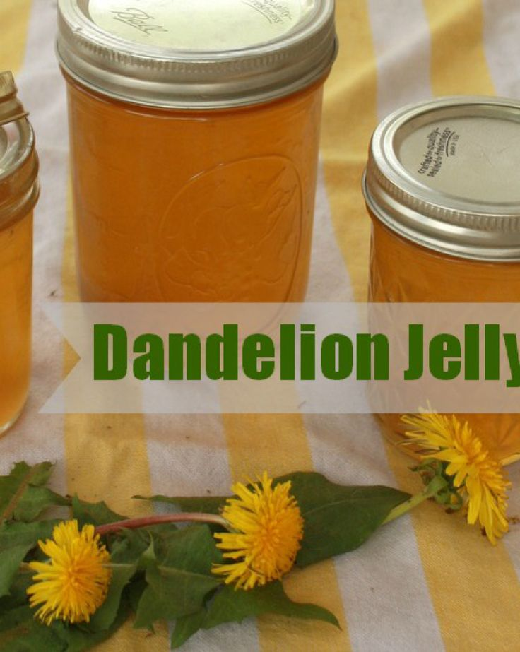 How to Make Dandelion Jelly (Cooking With Weeds) - Teaspoon of Spice