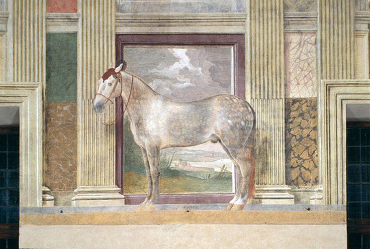 MURAL - Giulio romano's Fresco's in the Sala dei cavalli - Palazzo Te - Mantova Italia