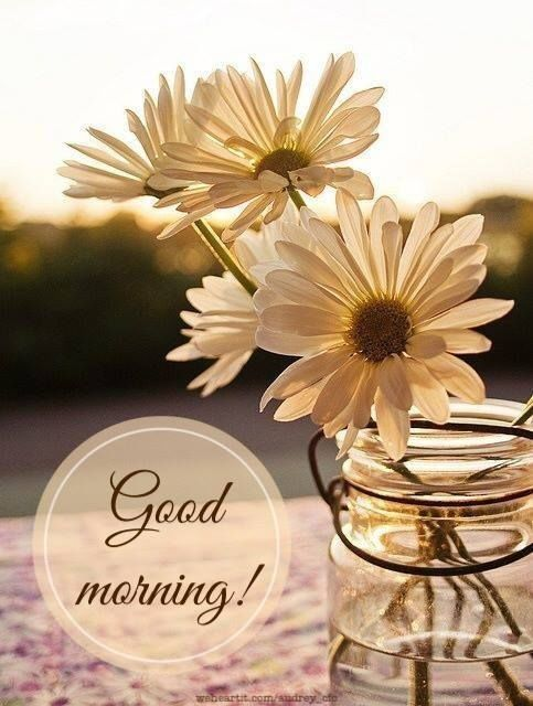 Good Morning Belinda, my dear friend, hope you have a wonderful day! <3