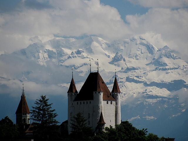Schloss Thun ( Château / Castle )