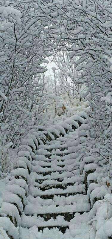 Winter white stairways