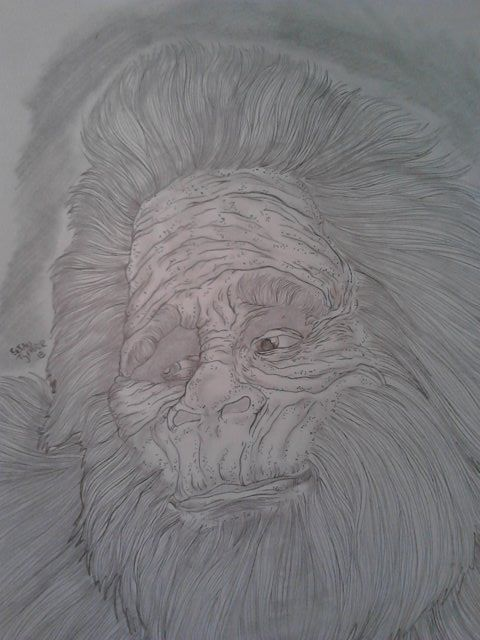 Harry from Harry and the Henderson's.  Size: 8.5'x11' pencil portrait  For Sale: $20 Free Shipping!!