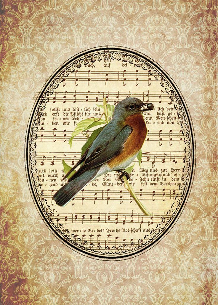 Ephemera's Vintage Garden: Freebie: Shabby Song Bird 5x7