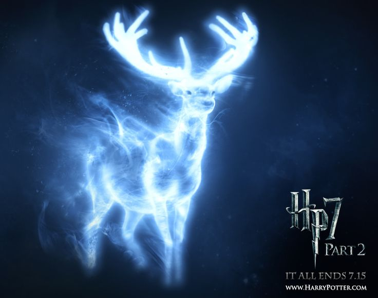 What's Your Patronus? I got horse-loyal, smart, and willing to take risks for my family and friends. That's so me!