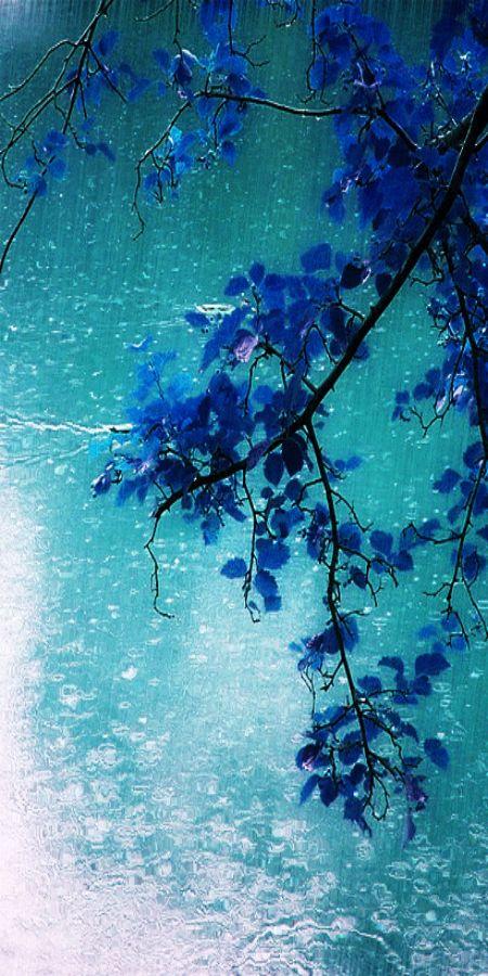 Jour de pluie : blue & turquoise