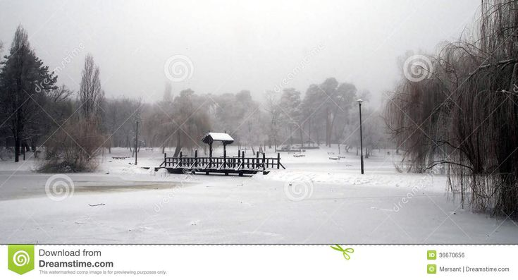 Winter scene with trees and a wooden-bridge (in city of Debrecen, Hungary)