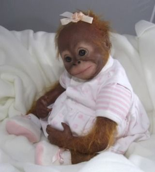Reborn orangutan by judy dickinson