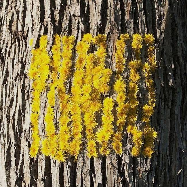 Artist's 'landthropologic' earth artworks bring out the wonders of nature (Video) - http://www.oroscopointernazionaleblog.com/artists-landthropologic-earth-artworks-bring-out-the-wonders-of-nature-video/